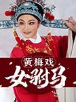 黄梅戏:女驸马(全本+经典唱段)-佚名-群星