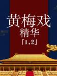 黄梅戏精华-多人-群星