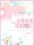 总裁宠妻100度C-王新鹏-孙景