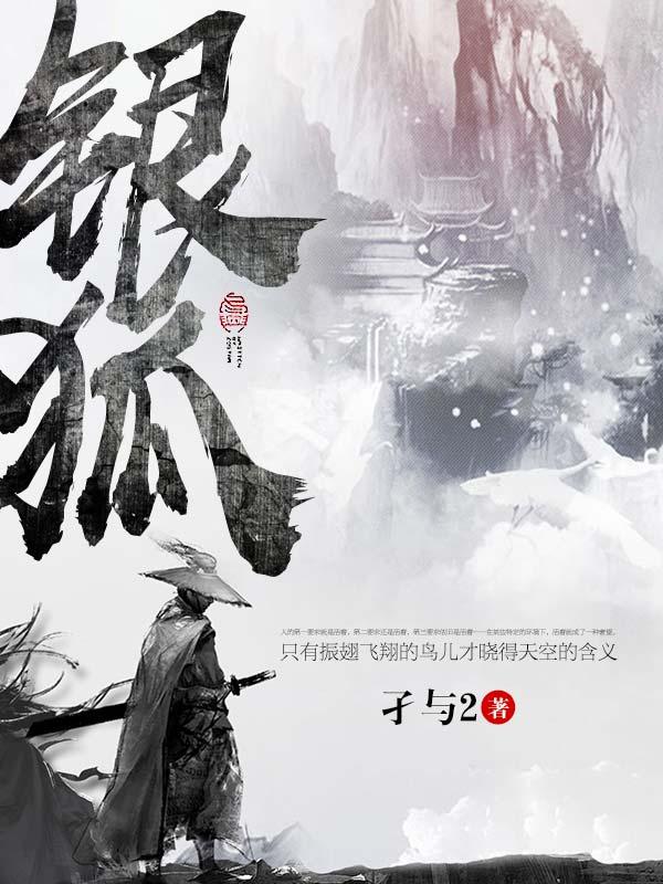 银狐-佚名-熊猫眼
