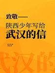 致敬——陕西少年写给武汉的信-宋亚萍-冬至,凤雏,墨道琴