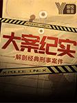 中国刑侦大案纪实-京西小旋风-娱悦佳音