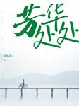 芳华处处-夏甲乙-天下书盟精品图书,大鹏,播音白小仙