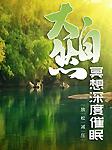 大自然冥想深度催眠:放松减压-赵洪宇-龙庙山精品故事