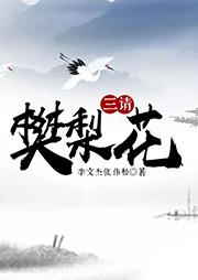黄梅戏:三请樊梨花-李文杰,张伟松-李文杰(黄梅戏演员)