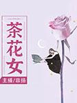 茶花女(世界名著)-亚历山大·小仲马-播音菲扬