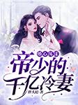 婚心荡漾:帝少的千亿冷妻-胖头鲶-关语嫣