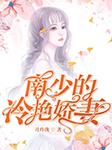南少的冷艳娇妻-月玲珑-洛筱黎