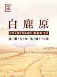 北大教授陈晓明讲《白鹿原》-陈晓明-琳琅智库