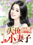 大婚晚辰,天价小妻子(多人精品剧)-云中月-枫九娘
