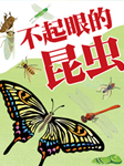奇妙的动物王国:不起眼的昆虫-英童书坊编纂中心-英童书坊