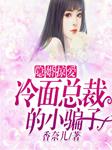 隐婚掠爱:冷面总裁的小骗子-香奈儿-三金金,水三寿
