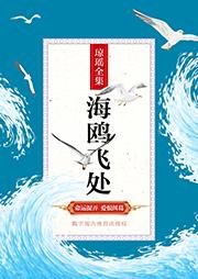 海鸥飞处-琼瑶-主播觉觉