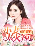萌娃来袭:小妻太火辣-北瑾-播音鱼子酱