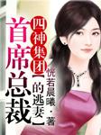 四神集团(一)首席总裁的逃妻-恍若晨曦-园园