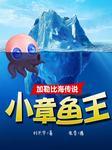 加勒比海传说:小章鱼王-刘兴华-佳音