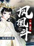 凤凰斗:第一庶女-南宫思-冬至