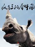 疯狂的犀牛角-财新传媒-雨莲