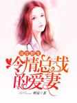 深度婚宠:冷情总裁的爱妻-琪安-煎饺