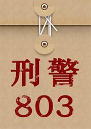 刑警803:黑白罪恶-上海故事广播-上海故事广播