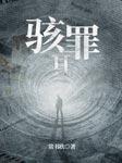 骇罪Ⅱ(《余罪》作者新作)-常书欣-晴木之声工作室