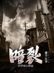 暗裂(江湖爱国大戏)-白学究-播音往事