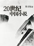 20世纪中国小说-许子东-看理想电台