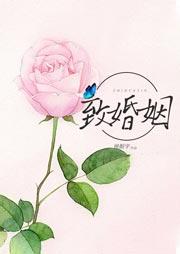 致婚姻(北漂夫妻的艰难爱情)-侯镇宇-方长鑫